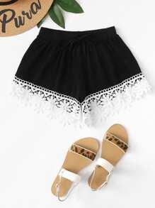 Drawstring Waist Lace Trim Shorts