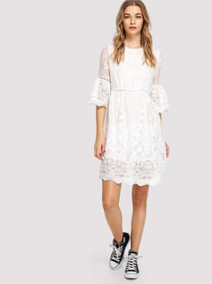 Ruffle Sleeve Crochet Pompom Insert Embroidery Dress