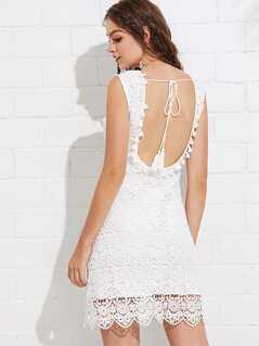 Tassel Knot Open Back Floral Lace Dress