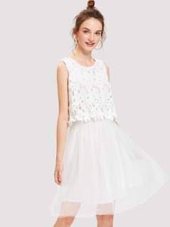 Lace Overlay Flare Mesh Dress