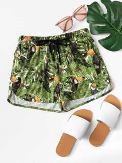 Tropical Print Dolphin Hem Shorts