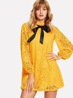 Lantern Sleeve Flower Lace Overlay Ruffle Tied Neck Dress