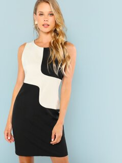 Two Tone Sleeveless From Fitted Dress