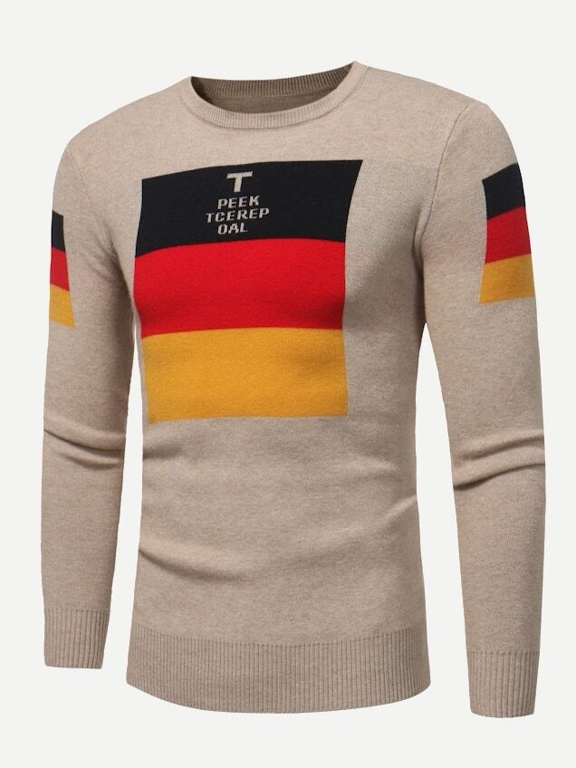 Men Letter Print Color Block Jumper
