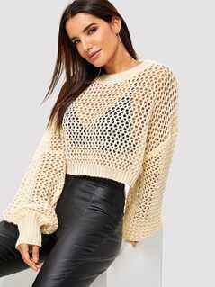 Loose Knit Sheer Crop Sweater