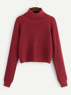 Roll Neck Raglan Sleeve Jumper
