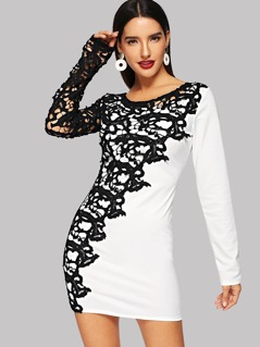 Floral Lace Overlay Round Neck Dress