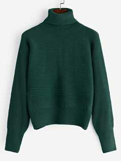 Rolled Neck Ribbed Knit Sweater