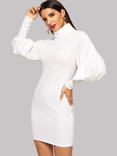 Roll Neck Solid Bodycon Dress