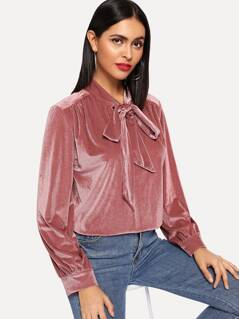 Solid Tied Neck Blouse