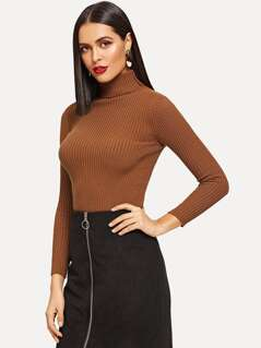 Turtle Neck Rib Knit Fitted Sweater