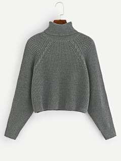 Raglan Sleeve Marled Knit Sweater