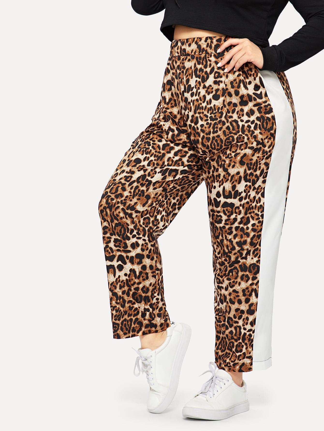 Купить Размер плюс контрастные леопардовые брюки, Carol, SheIn