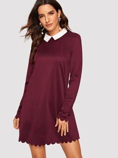 Contrast Collar Scallop Edge Tunic Dress