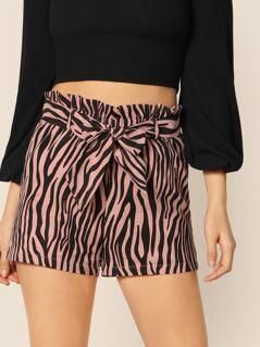 Waist Belted Zebra Print Shorts