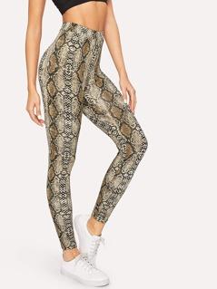 High Waist Snake Skin Leggings