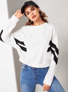 Cut-and-sew Dolman Sleeve Sweatshirt
