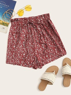 Ditsy Floral Elastic Waist Tie Front Shorts