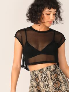 Crop Mesh Top Without Bra