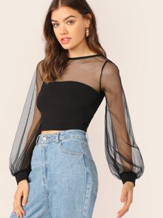 Sheer Mesh Yoke And Long Sleeve Crop Top