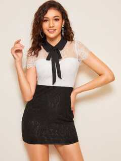 Tie Neck Two Tone Lace Overlay Dress
