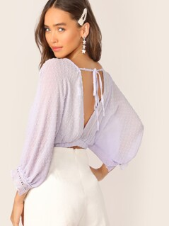 Swiss Dot Tie Back Eyelet Embroidered Crop Blouse