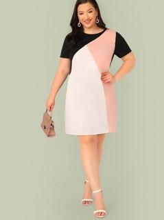 Plus Cut-and-sew Tunic Dress