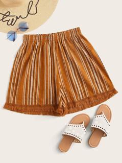 Raw Hem Striped Shorts