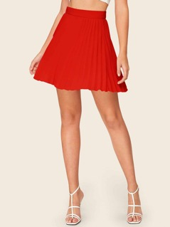 Zip Closure Pleated Skater Skirt