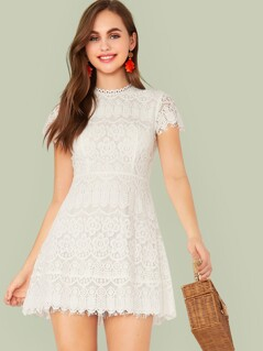 Solid Zip Back Fit and Flare Lace Dress