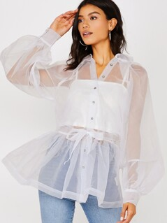 Button Front Bishop Sleeve Sheer Organza Blouse