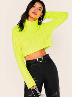 Turtleneck Large Rib Knit Crop Pullover Sweater