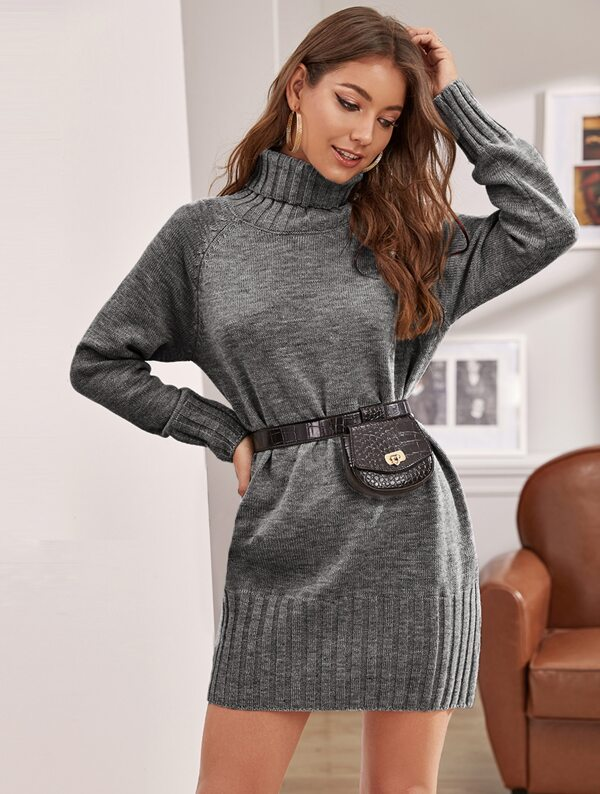 Raglan Sleeve Turtleneck Sweater Dress Without Bag, Debi Cruz