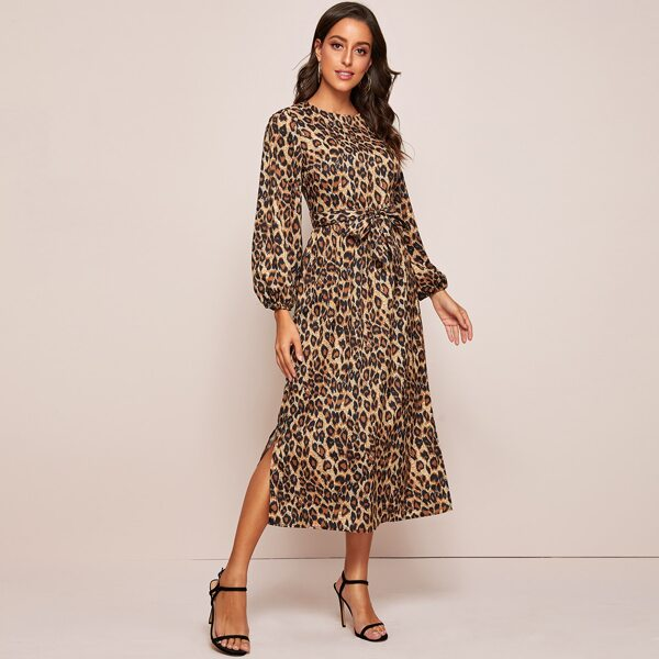 Leopard Print Self Tie A-line Dress, Multicolor