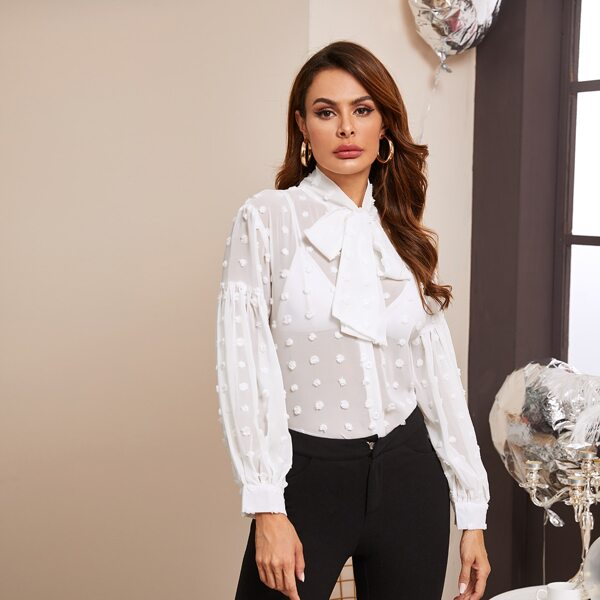 Tie Neck Swiss Dot Dip Hem Sheer Blouse, White