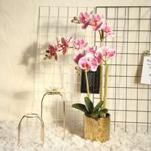 1 Branch Artificial Phalaenopsis