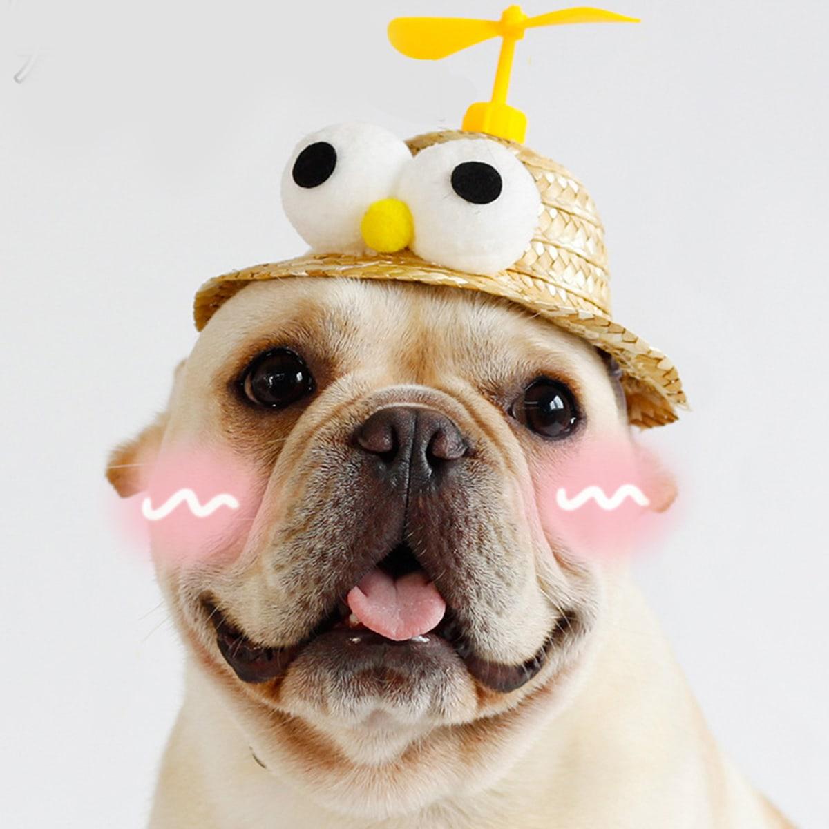 Шляпа для собак для защиты от солнца