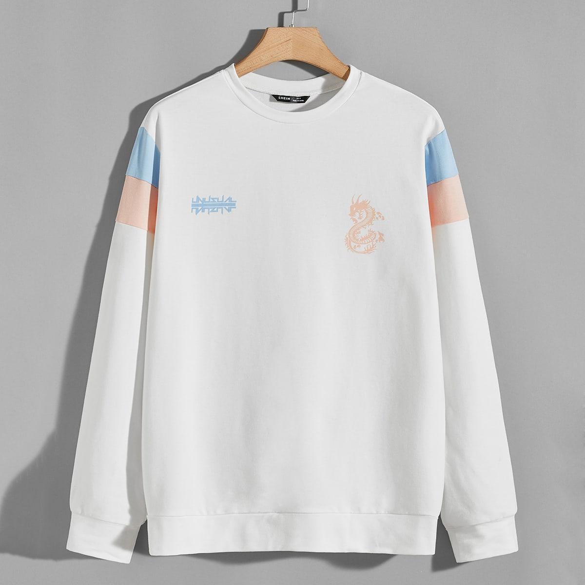 Мужской пуловер с принтом дракона от SHEIN