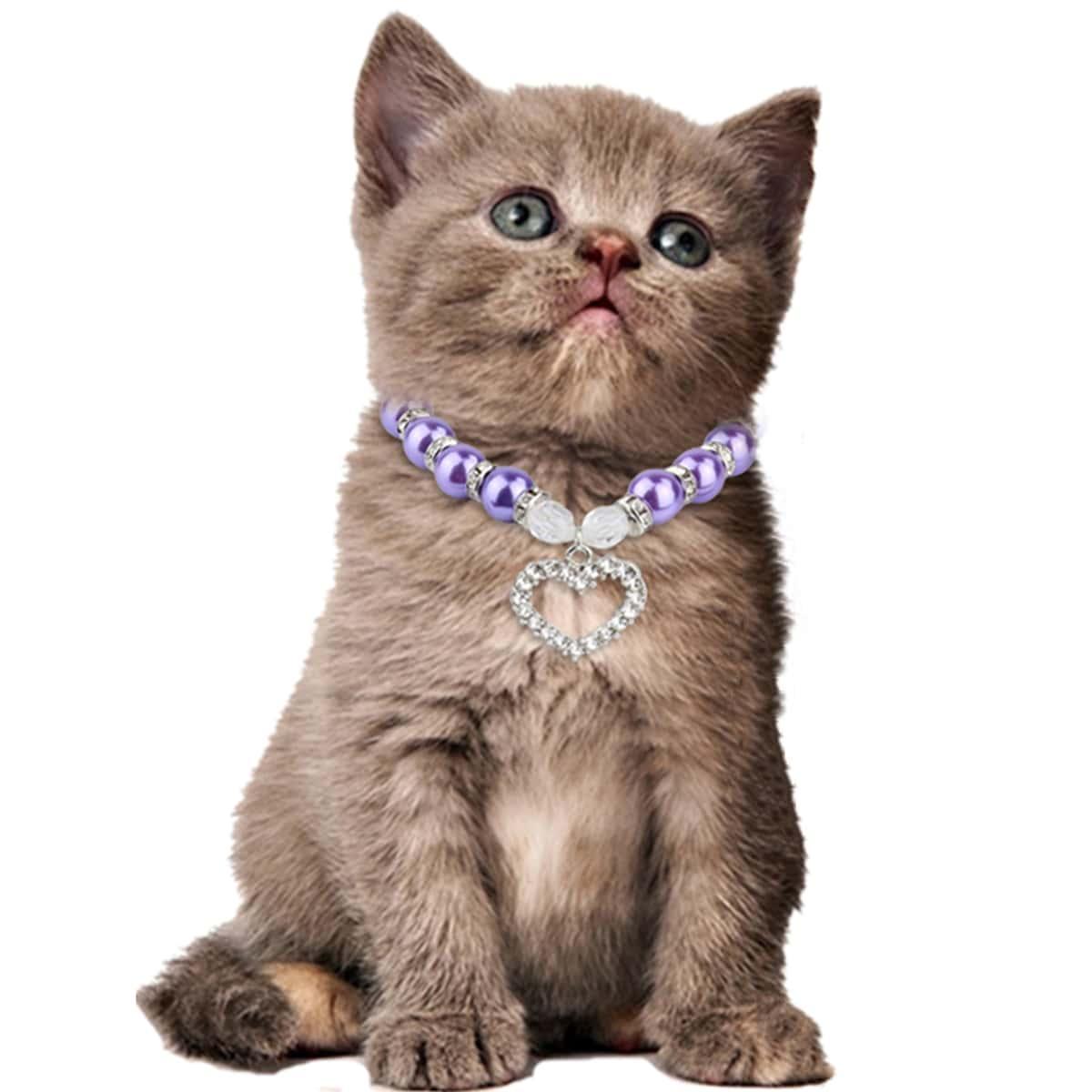 1шт ожерелье для кошек фото
