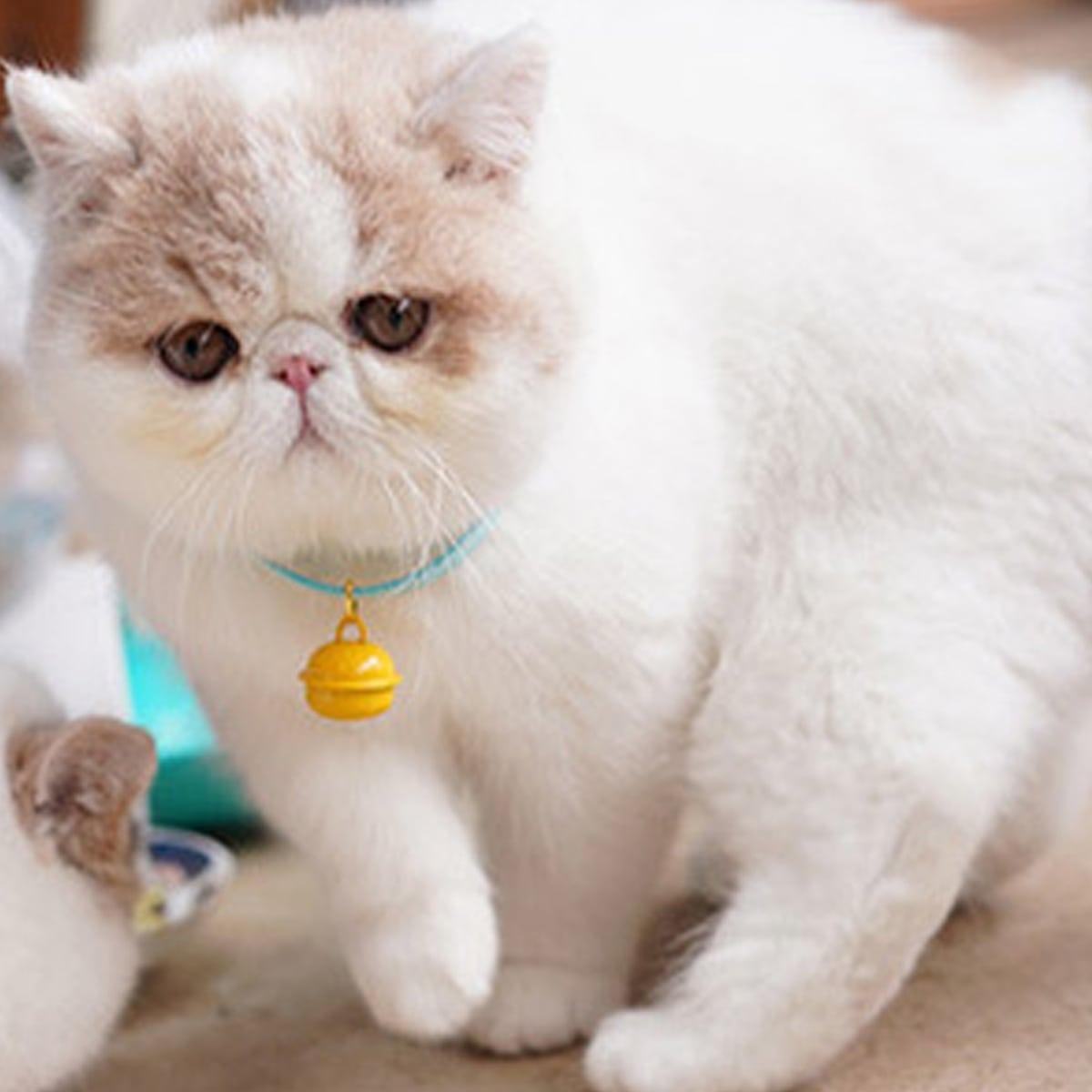 1шт ошейник с колокольчиков для кошек фото