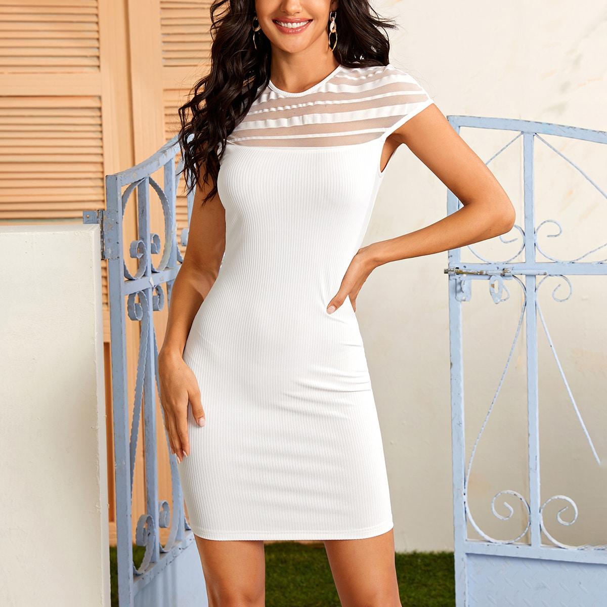 SHEIN / Strick figurbetontes Kleid mit Schlüsselloch hinten und transparentem Netzstoff