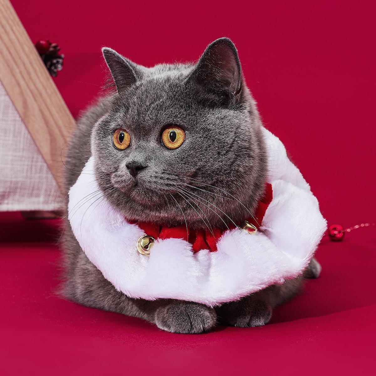SHEIN / Weihnachten Katze Halsband mit Glocken Dekor