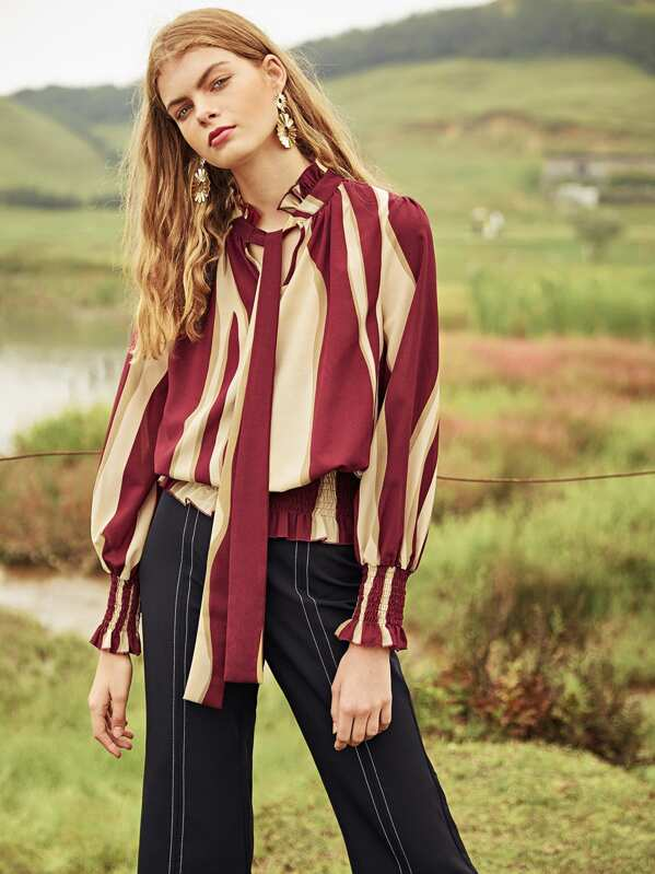 Tie Neck Shirred Panel Semi Sheer Blouse, null