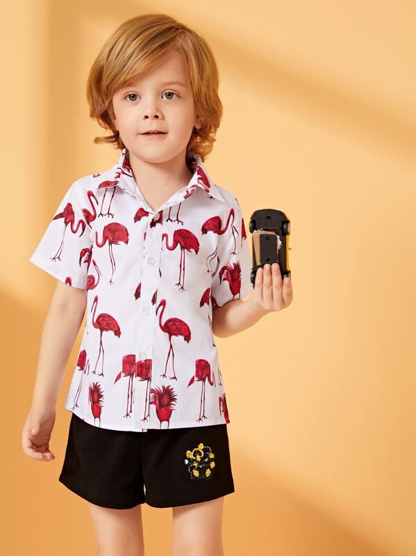 Toddler Boys Flamingo Print Shirt, Alex B