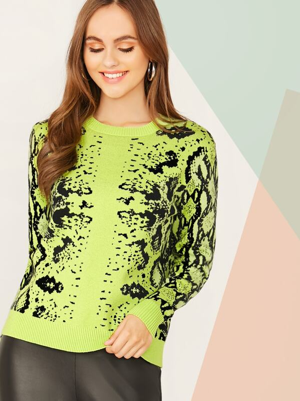 Neon Lime Snakeskin Pattern Sweater, Lily Easton