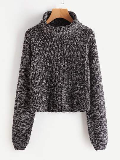 Roll Neck Raglan Sleeve Marled Knit Sweater