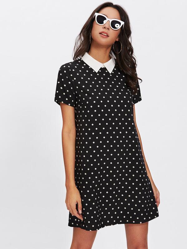 Kleid mit Punkte - German SheIn(Sheinside)