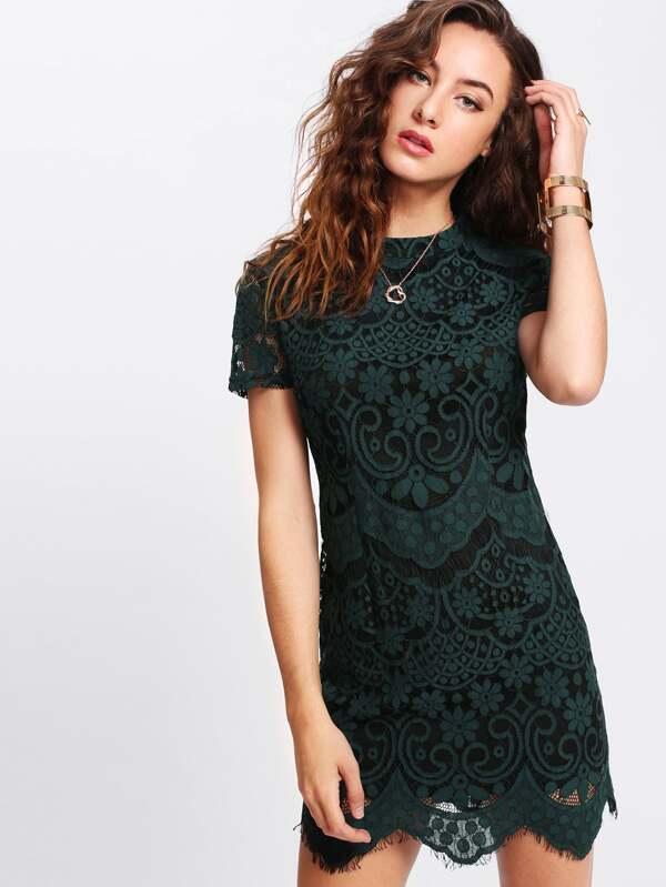 335cac4281 Mock Neck Lace Overlay Dress | SHEIN UK