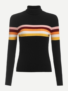 Rolled Neck Striped Rib Knit Sweater