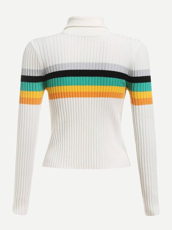 6b04b40d91f Rolled Neck Striped Rib Knit Sweater
